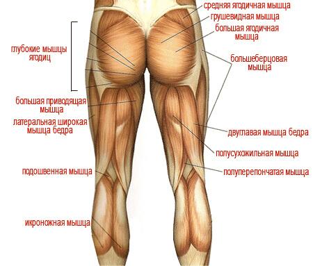 как тренироваться травма колена